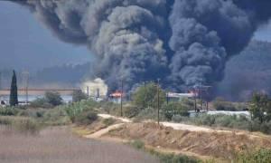 Πυρκαγιά σε εργοστάσιο μεταξύ Άργους - Ν. Κίου (pics&vid)