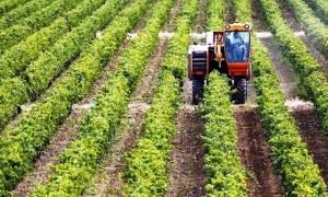 Αναπτυξιακά Προγράμματα: Επιδοτήσεις 1,5 δισ. για παραγωγή και μεταποίηση