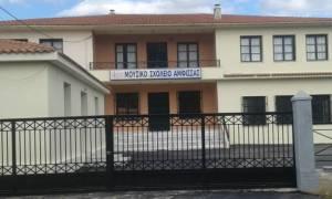 Σοκ: Πόρτα σχολείου καταπλάκωσε 12χρονο μαθητή στην Άμφισσα