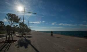 Θλιβερό θέαμα στη Θεσσαλονίκη: Η θάλασσα ξέβρασε νεκρό δελφίνι