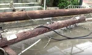 Κακοκαιρία: Εκτεταμένες καταστροφές από τον ανεμοστρόβιλο που σάρωσε τη Ζάκυνθο (vid)