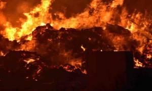 Συναγερμός στην Αργολίδα για μεγάλη πυρκαγιά (pics&vid)