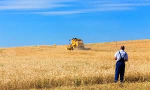 Το Δημόσιο δίνει χωράφια σε 30.000 αγρότες με «συμβολικό» ενοίκιο