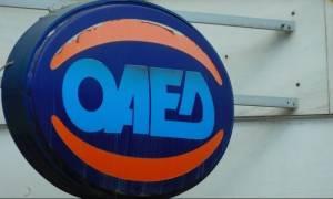 ΟΑΕΔ - Κοινωφελής Εργασία: Ξεκινά η διαδικασία υποβολής αιτήσεων για 6.339 θέσεις σε 34 δήμους