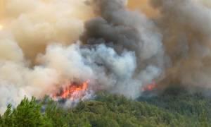 Υπό έλεγχο η φωτιά στον Αυλώνα