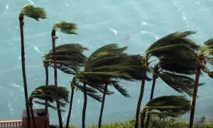 Τυφώνας Μάθιου: Πανικός στις ΗΠΑ - «Αυτός ο τυφώνας θα σας σκοτώσει» προειδοποιούν οι Αρχές (pics)