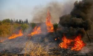 Υπό έλεγχο η φωτιά στην Αλεξανδρούπολη