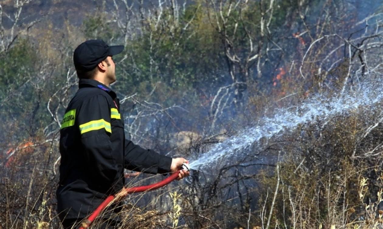 Πυρκαγιά στο Πικέρμι - ΤΩΡΑ