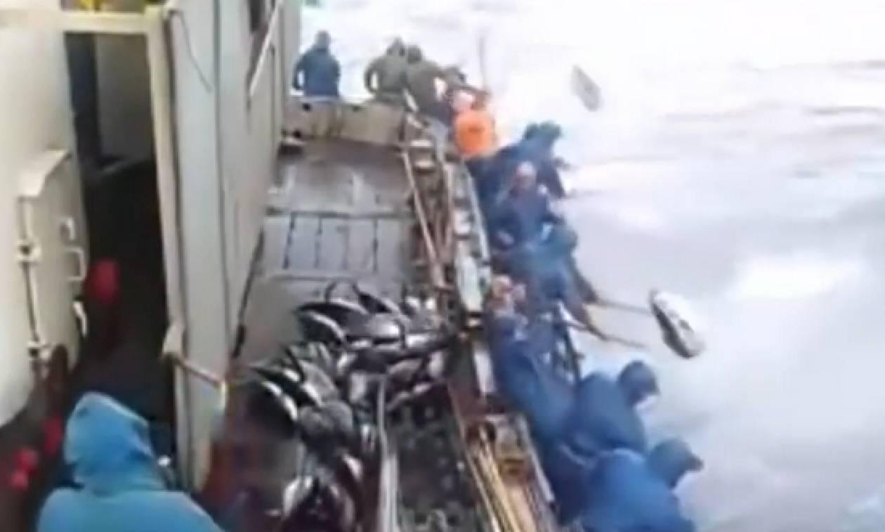 Οι Ιάπωνες ξέρουν... Αυτό το ψάρεμα τόνων θα σας καθηλώσει (video)