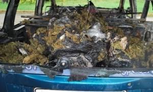 Ορεστιάδα: Συλλήψεις για μεταφορά 100 κιλών ακατέργαστης κάνναβης