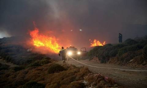 Fire burning forest in Andros