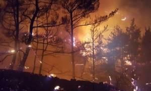 Νύχτα αγωνίας για τους κατοίκους στην Άνδρο: Μαίνεται η πυρκαγιά