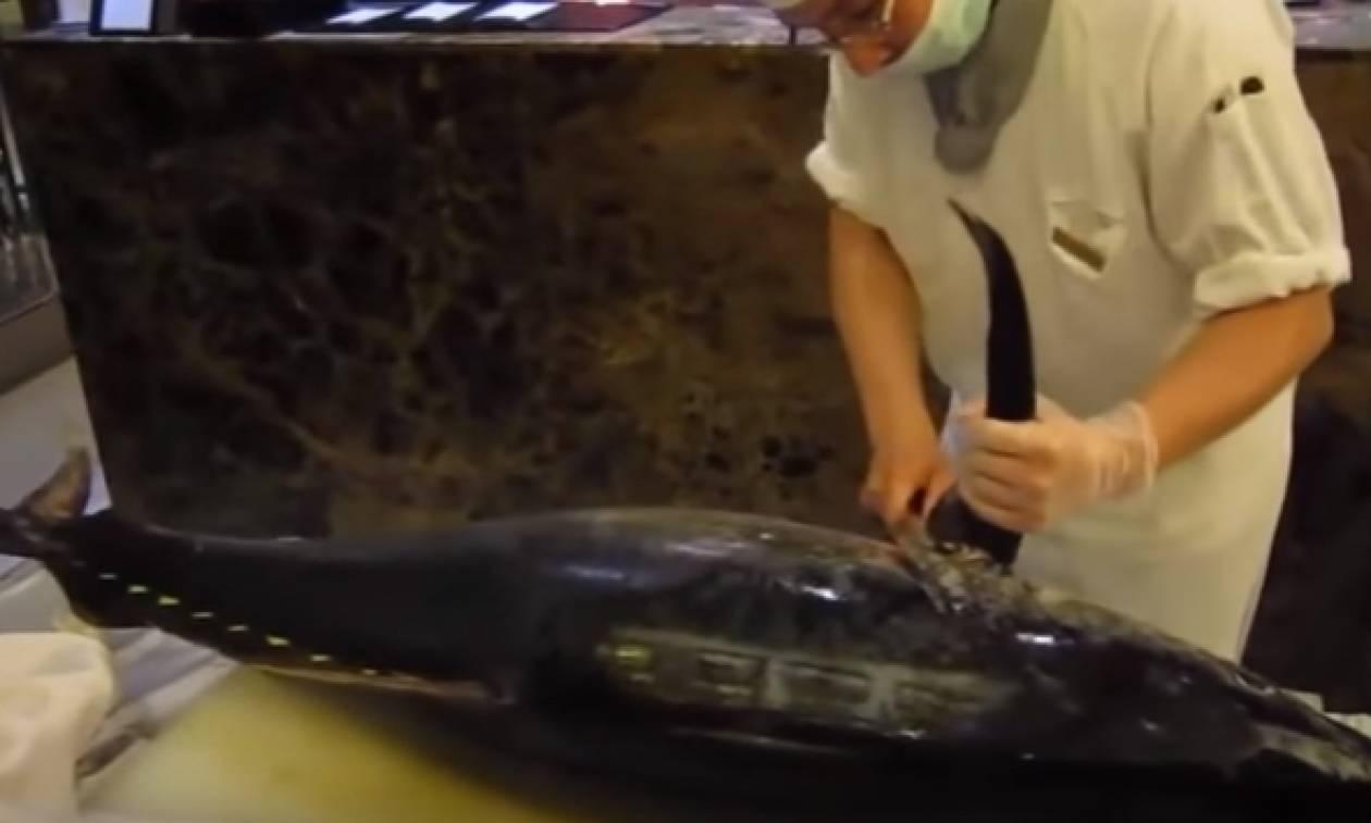 Πήρε μια... χατζάρα, έναν τεράστιο τόνο και τον έκανε... φιλέτο για σούσι (video)