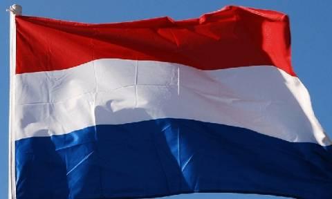 «Πράσινη» μανία από την Ολλανδία (photo)