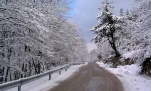 Καιρός για τσουχτερό κρύο: Έρχονται τα πρώτα χιόνια - Δείτε πού και πότε