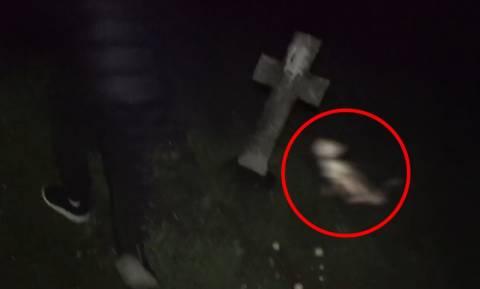 Εφιάλτης στο νεκροταφείο: Του ρούφαγε το αίμα και αυτός έτρεχε να γλιτώσει (videos+photos)