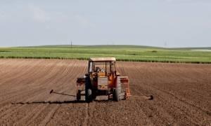 ΟΓΑ: Κίνδυνος για χιλιάδες αγρότες - Κινδυνεύουν ακόμα και με κατασχέσεις