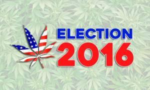 Εκλογές ΗΠΑ-Καλιφόρνια: Εκτός από Πρόεδρο ψήφισαν και…υπέρ της μαριχουάνας