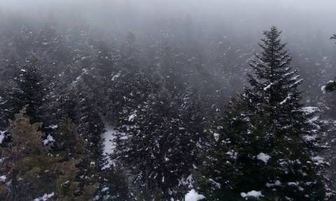 Weather Forecast: Rain, snow and gusty winds on Tuesday (29/11/2016)