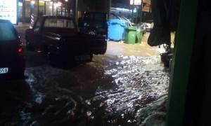 Κακοκαιρία: Μετρούν τις πληγές τους οι κάτοικοι της Μυτιλήνης - Τεράστιες οι καταστροφές