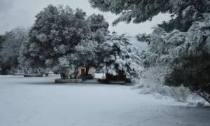 Κακοκαιρία: Στον «πάγο» όλη η χώρα - Θερμοκρασίες υπό το μηδέν και χιόνια ακόμα και στην Αττική