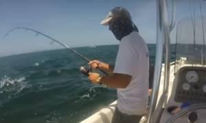 Ψαράς πιάνει γατόψαρο και προσπαθεί να του το αρπάξει ένα δελφίνι (video)