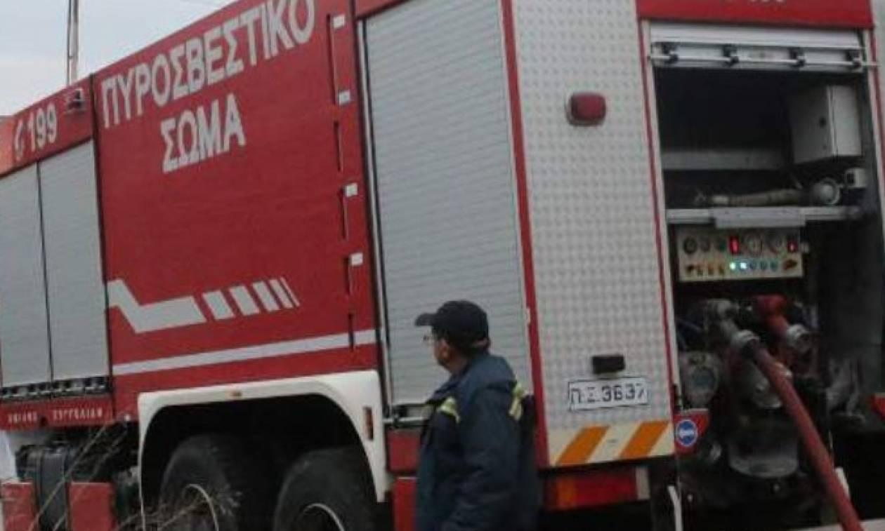 Λάρισα: Πυρκαγιά ξέσπασε σε εργοστάσιο επίπλων (pics)