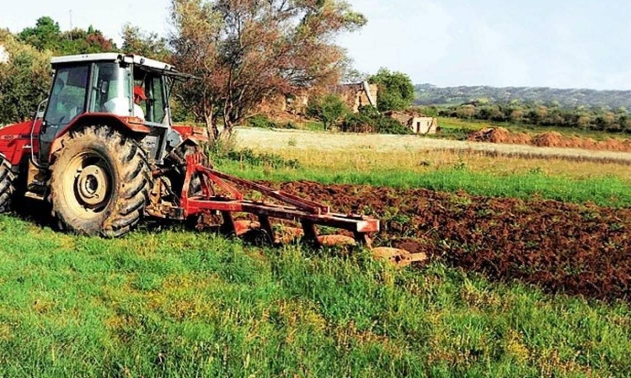 Συνταξιούχοι ΟΓΑ: Πώς θα γλιτώσετε τον «κόφτη» από την αγροτική σύνταξη