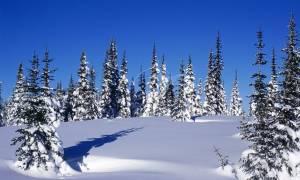 Η ΕΜΥ προειδοποιεί – Χιονιάς θα σαρώσει σε λίγες ώρες τη χώρα – Χιόνια και στην Πάρνηθα