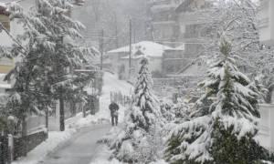 Έρχεται κρύο: Μάθε τα απόλυτα κόλπα για να αντιμετωπίσεις τον χιονιά (video)