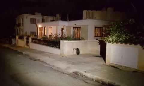 Με άρωμα ναρκωτικών η έκρηξη στην οικία της Δημ. Κατηγόρου-Πού στρέφονται οι έρευνες της Αστυνομίας