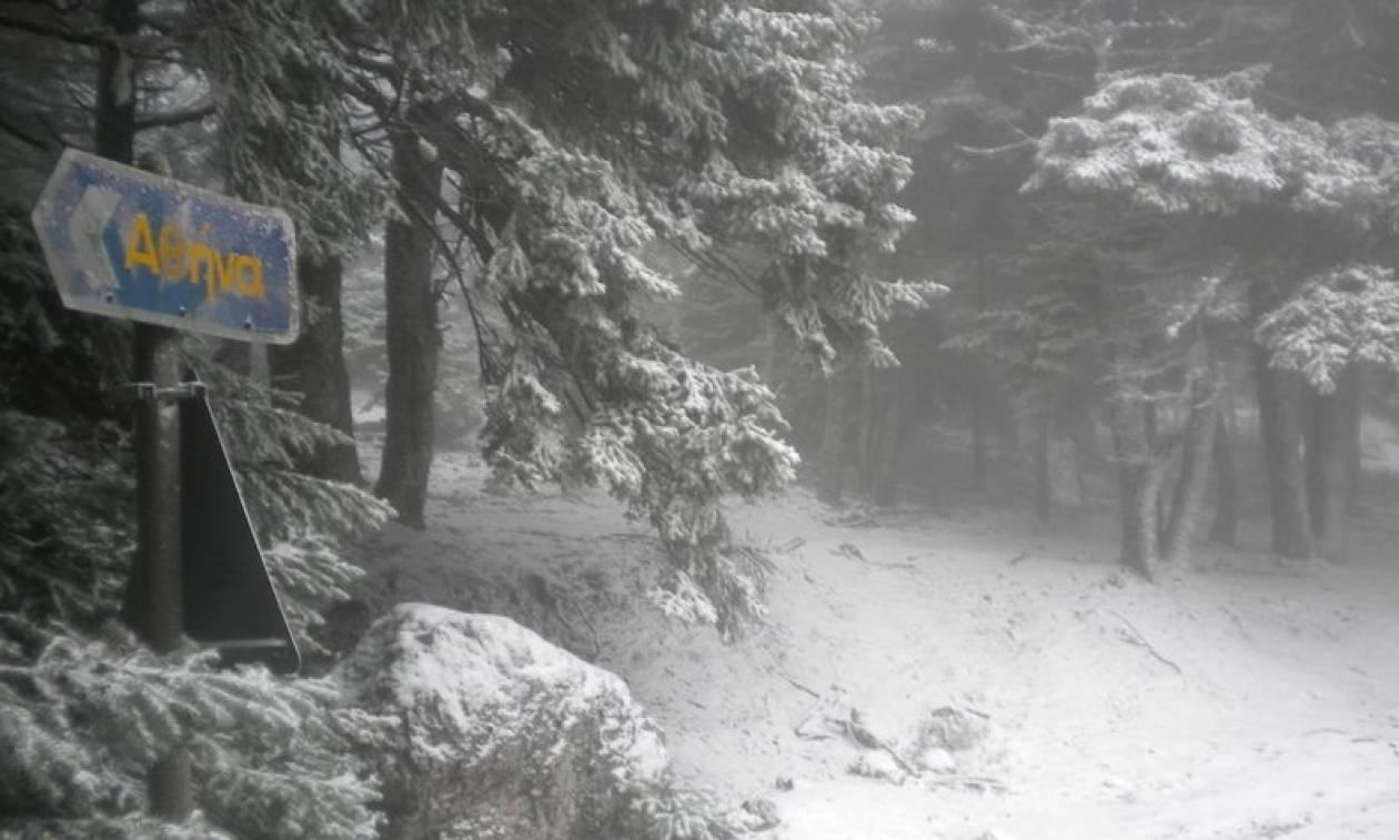 Αποτέλεσμα εικόνας για χιονιας