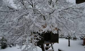 Καιρός: Χιόνια παντού το Σάββατο (17/12) - Αναλυτική πρόγνωση