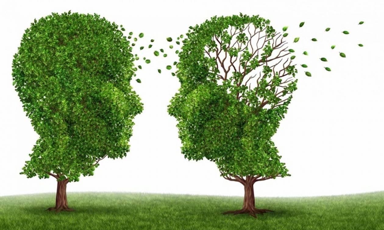 Έρευνα: Ποιοι είναι οι περιβαλλοντικοί παράγοντες κινδύνου για την άνοια