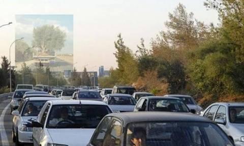 Οδηγός στην Κύπρο φόρτωσε στο αυτοκίνητο του κάτι ασύλληπτ - «Το υπόλοιπο...που είναι;» (photo)