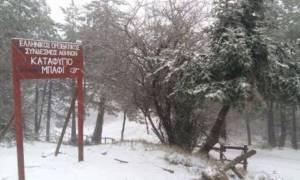 Καιρός: Τσουχτερό κρύο και χιόνια την Τετάρτη (21/12) - Αναλυτική πρόγνωση