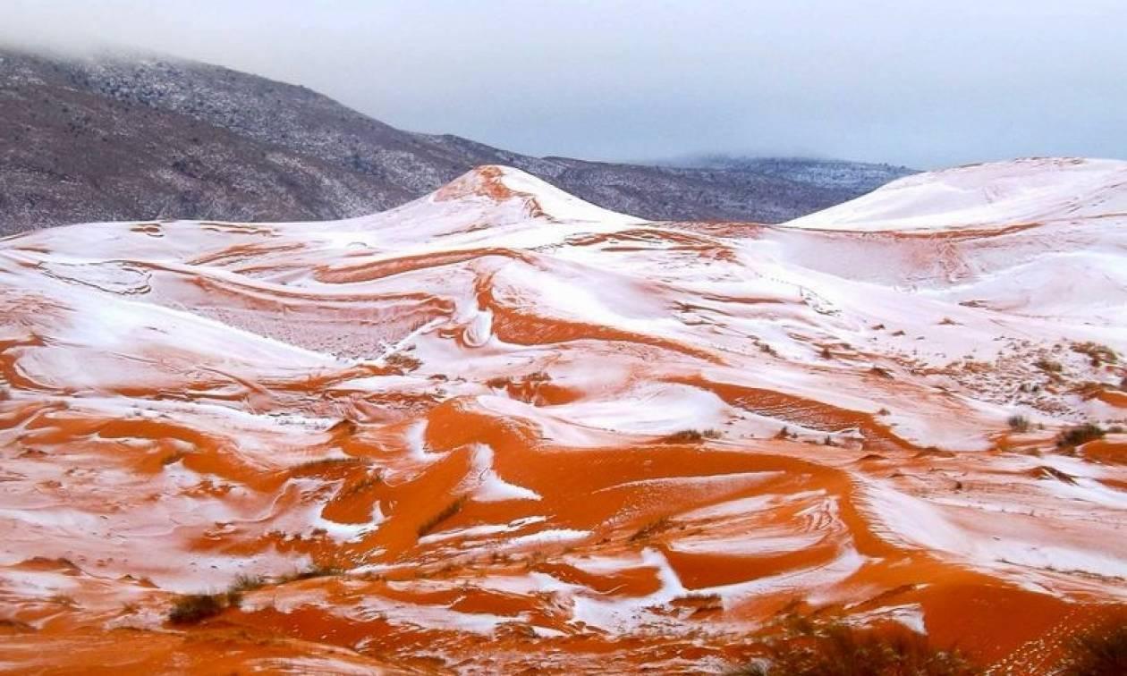 Εντυπωσιακές εικόνες: Χιόνισε στην έρημο Σαχάρα για πρώτη φορά μετά από 37 χρόνια!