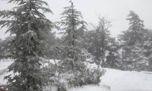 Χιονίζει ΤΩΡΑ στην Αττική – Δείτε Live εικόνα