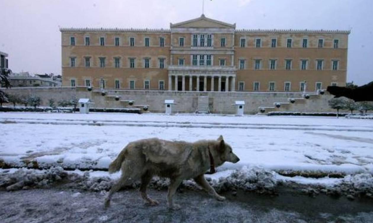 Καιρός: Λευκή νύχτα στην Αττική – Θα ξυπνήσουμε με χιόνια