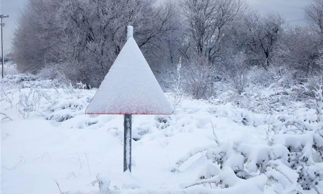 Καιρός για χιόνια – Απίστευτο! Δείτε ποια περιοχή της Ελλάδας «ντύθηκε» στα λευκά