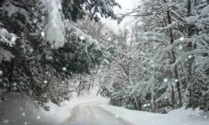Χιόνια στην Αθήνα - Η Τροχαία προειδοποιεί! Αυτοί οι δρόμοι είναι κλειστοί
