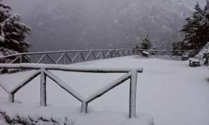 Καιρός: Σε αυτή την περιοχή της Ελλάδας έριξε δύο μέτρα χιόνι (photos)