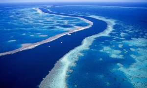 Ο πλανήτης εκπέμπει SOS: Τι ανησυχητικό συμβαίνει τα τελευταία 65 χρόνια;