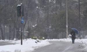 Καιρός: Η ΕΜΥ προειδοποιεί - Πού θα χιονίσει σε λίγες ώρες σε Αθήνα και Θεσσαλονίκη