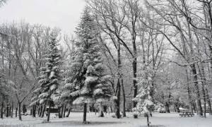 Καιρός: Πάνω από την Ελλάδα ο χιονιάς «Αριάδνη» - Χιόνια και πολικό ψύχος σε ολόκληρη τη χώρα
