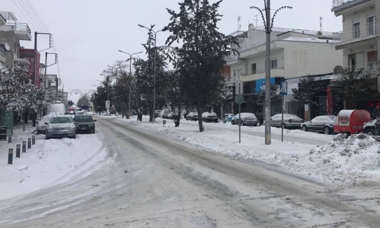 Χιονιάς Αριάδνη: Έντυσε στα... λευκά την Ορεστιάδα από το πρωί (vid)