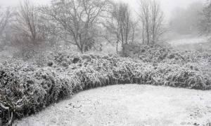 Καιρός LIVE: Πού χιονίζει τώρα