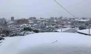 Καιρός LIVE: Συγκλονιστικές φωτογραφίες και βίντεο αναγνωστών του Newsbomb.gr από τα χιόνια