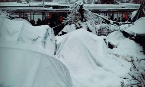 Καιρός ΤΩΡΑ - Μυτιλήνη: Στο έλεος του χιονιά οι πρόσφυγες - Θάφτηκαν οι σκηνές στη Μόρια (photo)