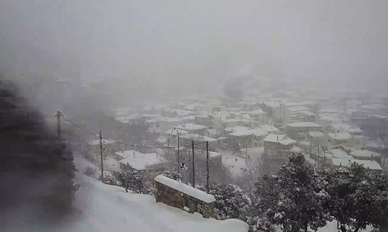 Ζωντανή εικόνα: Θάβεται στο χιόνι η Στενή Ευβοίας (Live Cam)